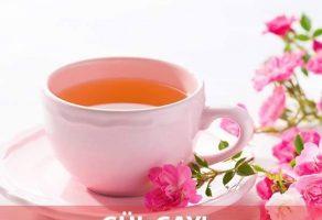 Gül Çayının Faydaları
