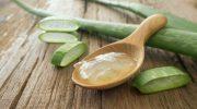 Aloe Vera Bitkisinin Doğal Tedavide Sağladığı Faydalar