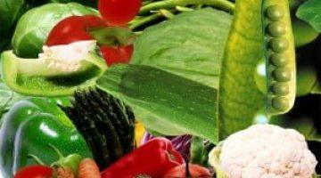 Folik Asit (Folasin, B 10 Ya Da B 11 Vitamini)