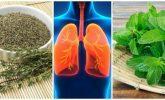 Akciğer Sağlığınıza İyi Gelecek 8 Bitki
