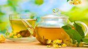Akağaç Çayının Faydaları, Akağaç Şurubu, Diyet, Neye İyi Gelir