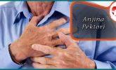 Anjina Pektoris Nedir Tedavisi Nasıl Yapılır?