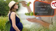 Hamilelik de Kilo Kontrolü
