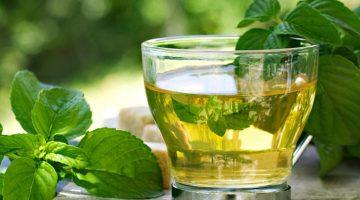 Okaliptus Çayı Faydaları Nelerdir?