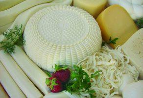 Peynir Ve Yoğurt