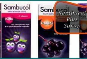 Sambucol Plus Şurup Efervesan Black Elderberry Extract