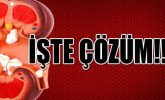 Böbrek Taşı Nasıl Düşürülür Bitkisel Çözüm İbrahim Saraçoğlu Ahmet Maranki