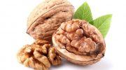 Ceviz: sağlığımız için küçük ama önemli besin kaynağı