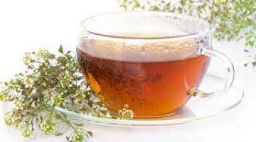 Civan Perçemi Çayının Faydaları