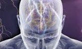 Sara Epilepsi Belirtileri ve Tedavisi