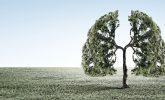 Akciğer Kanseri Belirtileri, Yaşam Süresi ve Tedavisi