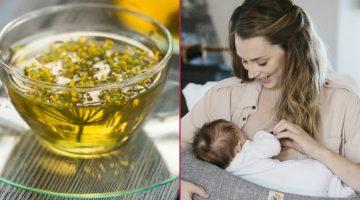 Emzirenler İçin Süt Arttırıcı Rahatlatıcı Çay Tarifi İçin Malzemeler