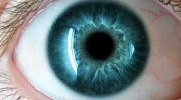 Gözün Görevi ve Özellikleri