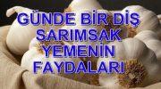 SARIMSAK YUTMANIN FAYDALARI
