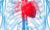 Kalp Yetmezliği Nedir, Nedenleri, Belirtileri ve Tedavisi