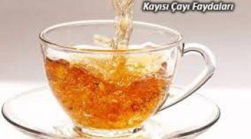 Kayısı Çayının Faydaları Nelerdir, Kayısı Çayı ZayıflatırMı