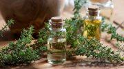 Kekik yağı: Solunum sorunlarının tedavisinde kullanılır