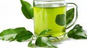 Moringa Çayı, Faydaları, Kullananlar, Kullanımı, Fiyatı