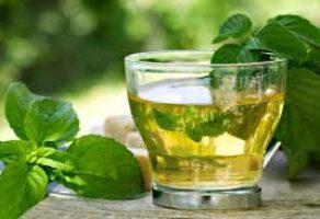 Nane Çayının Faydaları ve Yapılışı