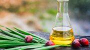 Palm yağı: A vitamini değerini yükseltir