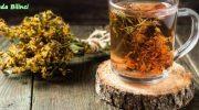 Sarı Kantaron Çay Nasıl Hazırlanır ? Faydaları Nelerdir ?