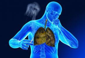 Sigara İçmek ve Antioksidanlar