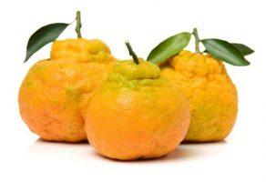 Ugli meyvesi: Diyabetle Mücadele Ediyor