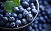 Yabanmersini: 5 Kanıtlanmış Sağlık Faydaları ve Besin Değerleri